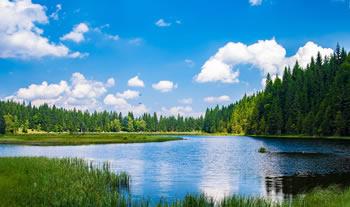 Bild aus der Region Bayerischer Wald
