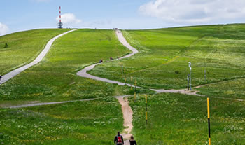 Bild aus der Region Schwarzwald