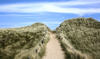 Bild aus der Region Nordseeküste & Inseln